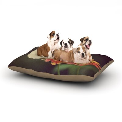 Robin Dickinson Captivating Flower Dog Pillow with Fleece Cozy Top Size: Small (40 W x 30 D x 8 H)