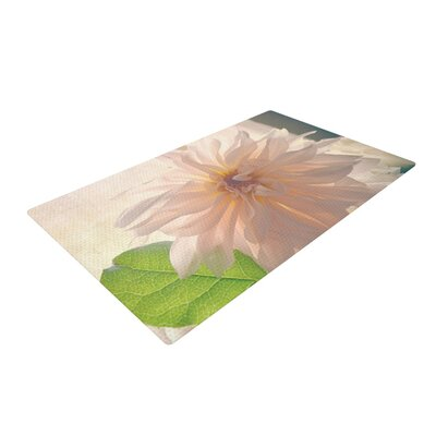 Robin Dickinson Buy Her Flowers White/Pink Area Rug