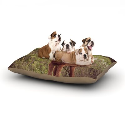 Robin Dickinson Confuscous Dog Pillow with Fleece Cozy Top Size: Small (40 W x 30 D x 8 H)