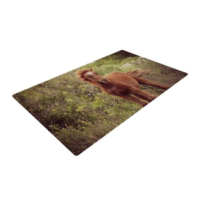 Robin Dickinson Confuscous Brown/Green Area Rug Rug Size: 2 x 3