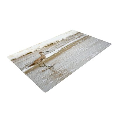 Robin Dickinson Counting the Waves Brown/White Area Rug