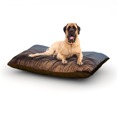 Sunset on the Beach Dog Bed Size: 40 L x 30 W