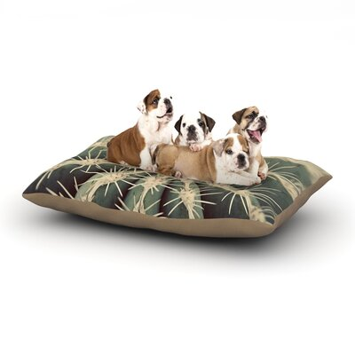 Cactus Dog Bed Size: 40 L x 30 W