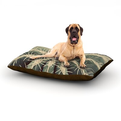 Cactus Dog Bed Size: 60 L x 50 W