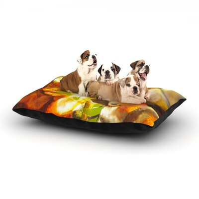 Memory Dog Bed Size: 40 L x 30 W