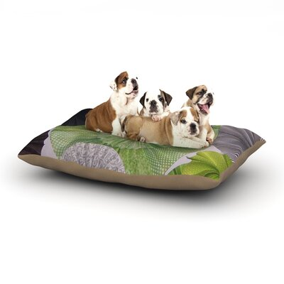Serenity Dog Bed Size: 40 L x 30 W