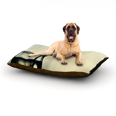 Make A Wish Dog Bed Size: 60 L x 50 W
