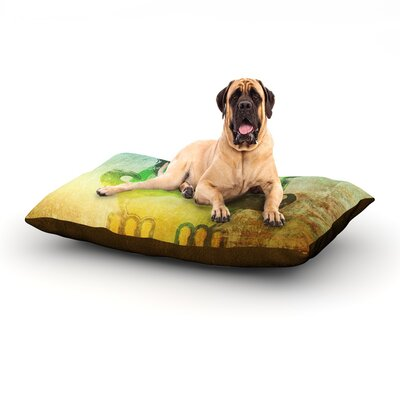 Howly Dog Bed Size: 60 L x 50 W