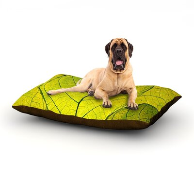 Every Leaf a Flower Dog Bed Size: 60 L x 50 W