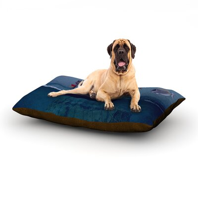 The Voyage Carter Dog Bed Size: 28 L x 18 W