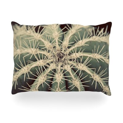 Cactus Plant Outdoor Throw Pillow Size: 14 H x 20 W x 3 D