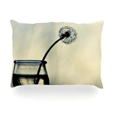 Make A Wish Outdoor Throw Pillow Size: 14 H x 20 W x 3 D