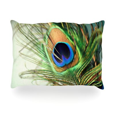 Peacock Feather Outdoor Throw Pillow Size: 14 H x 20 W x 3 D
