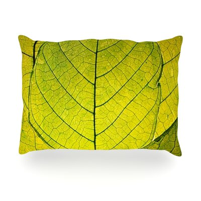 Every Leaf a Flower Outdoor Throw Pillow Size: 14 H x 20 W x 3 D