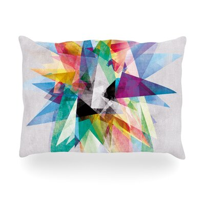 Colorful Rainbow Abstract Outdoor Throw Pillow Size: 14 H x 20 W x 3 D