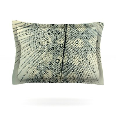 Feather Light by Ingrid Beddoes Featherweight Pillow Sham Size: Queen, Fabric: Cotton