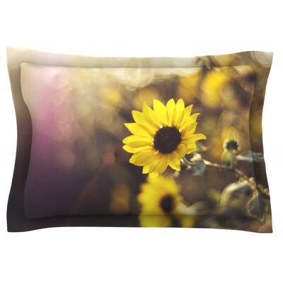 Magic Light by Libertad Leal Featherweight Pillow Sham Size: King, Fabric: Cotton