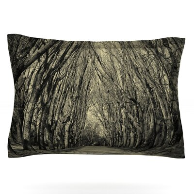Where Trees Still Whisper by Ingrid Beddoes Featherweight Pillow Sham Size: Queen, Fabric: Cotton