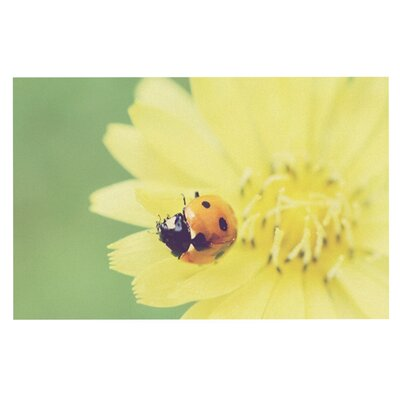 Beth Engel Little Ladybug Doormat