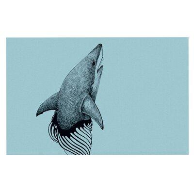 Graham Curran Shark Record Doormat Color: Mint Green