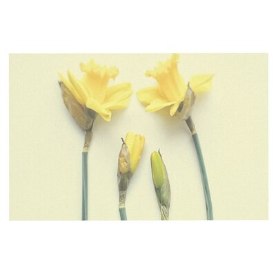 Debbra Obertanec Springtime Tulip Doormat