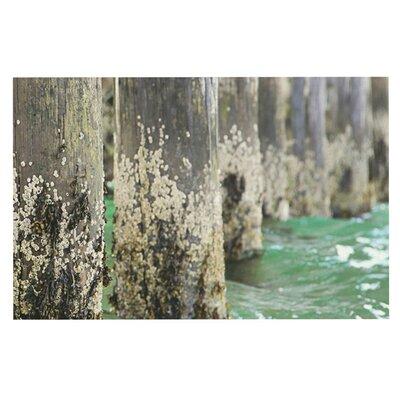 Debbra Obertanec Saltwater Pylons Wooden Doormat