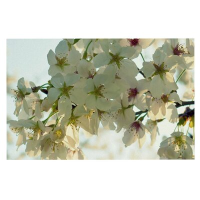 Robin Dickinson Cherry Blossoms Flower Doormat