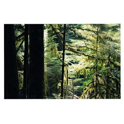 Robin Dickinson Enchanted Forest Doormat