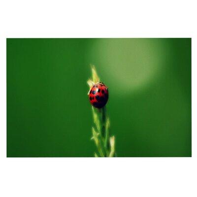 Robin Dickinson Ladybug Hugs Doormat