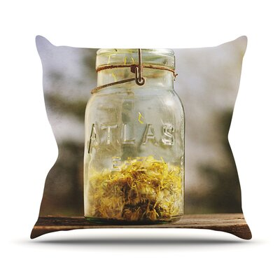 Jar of Sunshine by Angie Turner Country Throw Pillow Size: 18 H x 18 W x 1 D