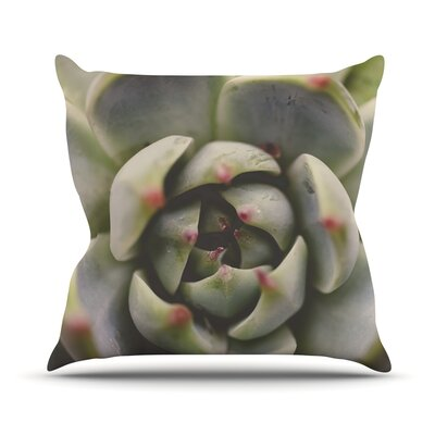 Desert Succulent by Debbra Obertanec Throw Pillow Size: 26 H x 26 W x 1 D