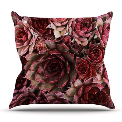 Succulents by Debbra Obertanec Maroon Throw Pillow Size: 18 H x 18 W x 1 D