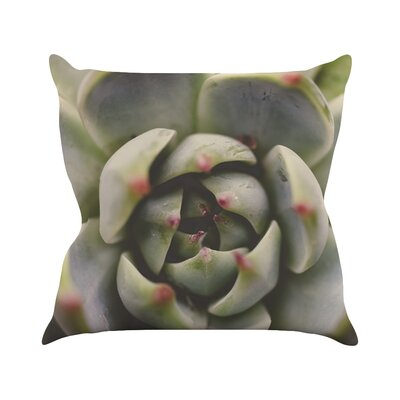 Desert Succulent by Debbra Obertanec Throw Pillow Size: 20 H x 20 W x 1 D