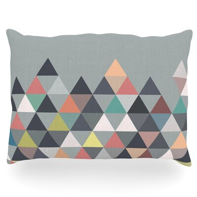 Nordic Combination Abstract Outdoor Throw Pillow Size: 14