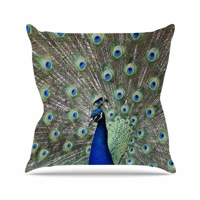 Peacock of Stunning Features Throw Pillow Size: 16 H x 16 W
