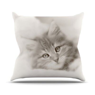 Main Coon Kitten Throw Pillow Size: 26 H x 26 W
