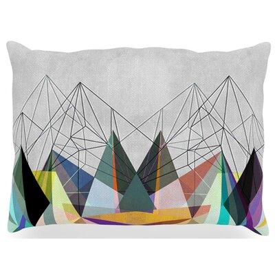 Colorflash 3X Rainbow Outdoor Throw Pillow Size: 14 H x 20 W x 3 D