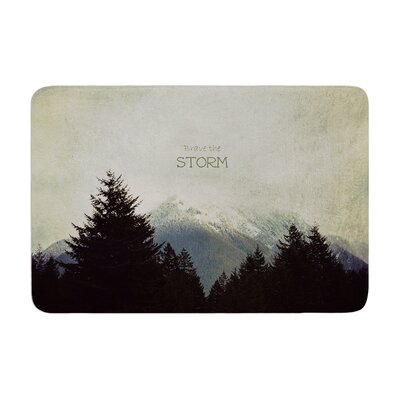 Robin Dickinson Brave the Storm Snow Mountain Memory Foam Bath Rug