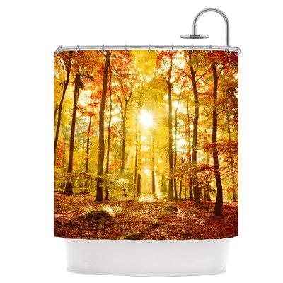Sun Flooded Shower Curtain IL2077ASC01