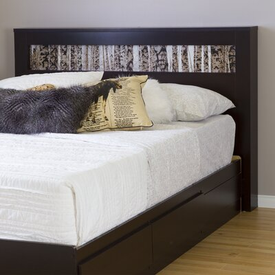 Vito Panel Headboard Upholstery: Chocolate/Birch
