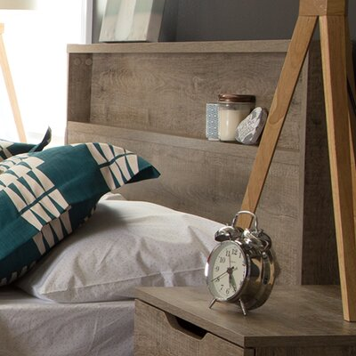 Holland Full/Queen Panel Headboard Finish: Weathered Oak