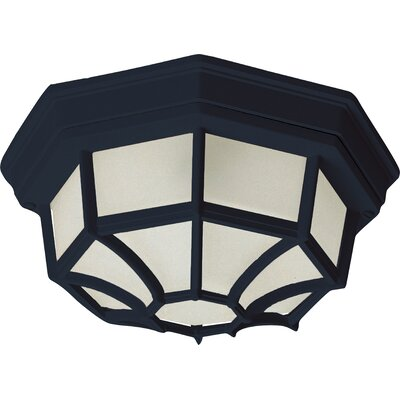 Side Door ES 1-Light Flush Mount Finish: Black