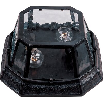 Garden VX 2-Light Flush Mount