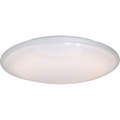 Rim Plus EE 2 Light Flush Mount