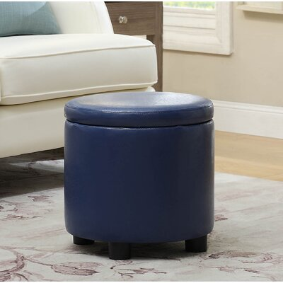 Garonzik Storage Ottoman Upholstery: Blue