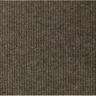 Concord Doormat Rug Size: Runner 22 x 50, Color: Tan