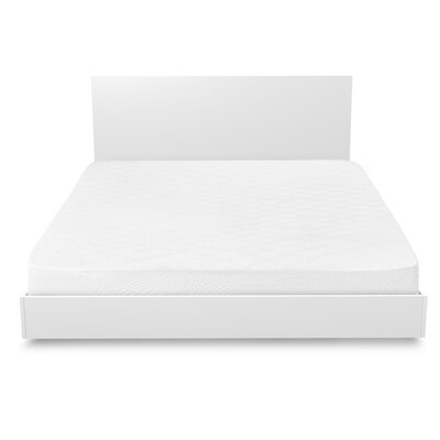 Cotton & Polyester Blend Mattress Pad Size: Queen