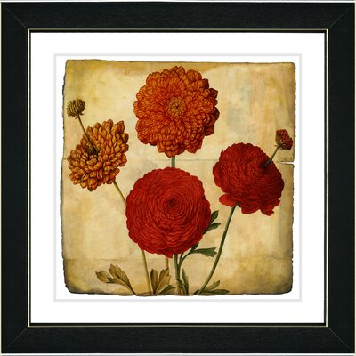 Vintage Botanical No. 50A by Zhee Singer Framed Giclee Print Fine Wall Art Size: 14