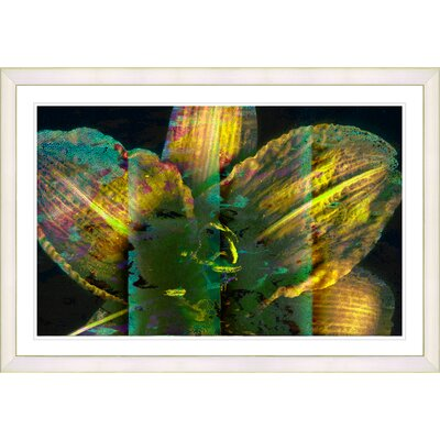 'Abstract Floral Still Life Yellow Night Flower' Framed Graphic Art Print on Paper Frame Color: White