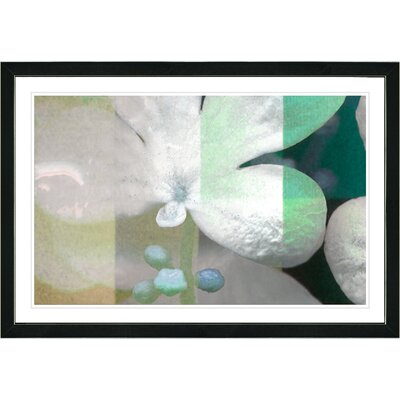 'Abstract Floral Still Life Teal Chelsea Flower' Framed Graphic Art Print on Paper Frame Color: Black